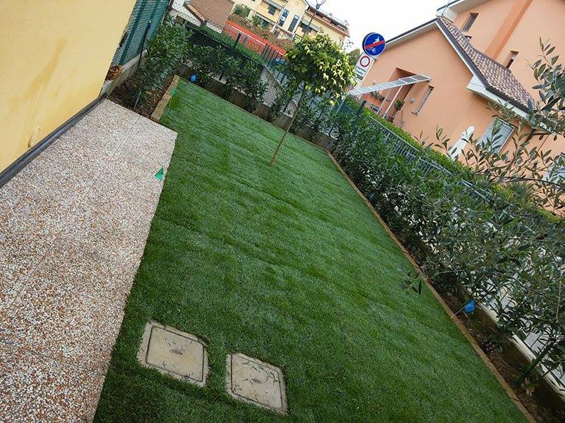 Manutenzione del verde verdeacqua for Giardino sempre verde