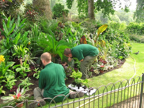 manutenzione_giardino